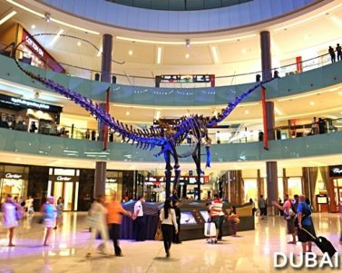 Dubai Dino: 155-Million-Year-Old Dinosaur in Dubai Mall