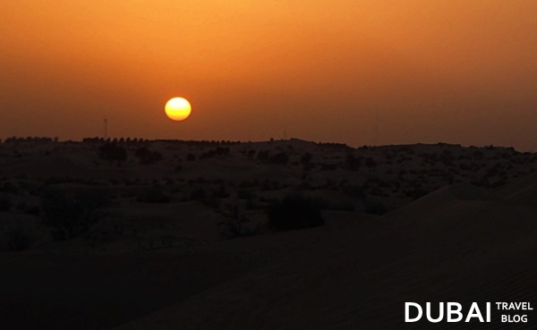 sunset dubai desert