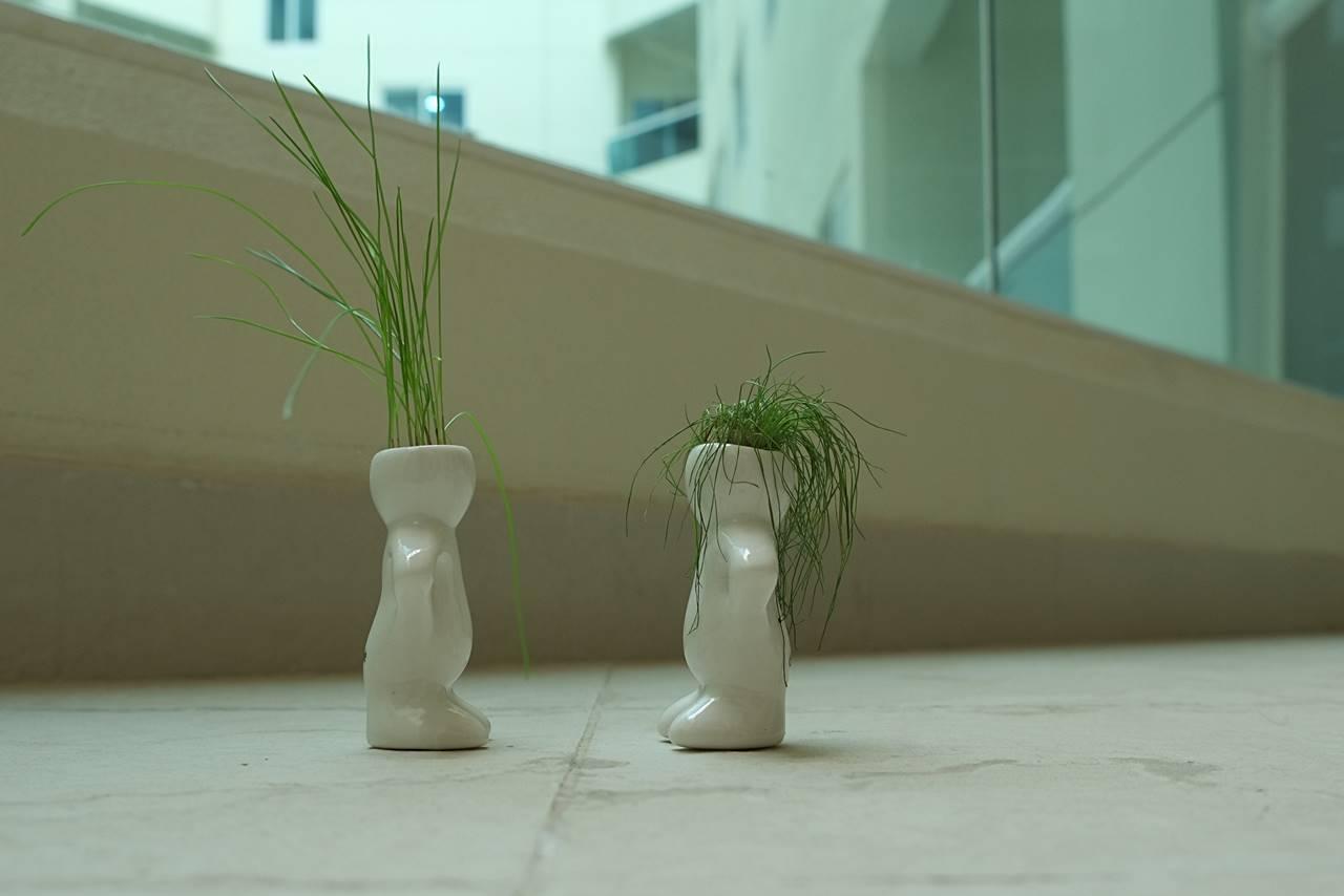 dubizzle plant figurines