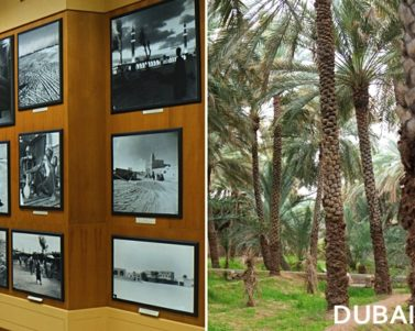 Visiting the Al Ain National Museum and Al Ain Oasis