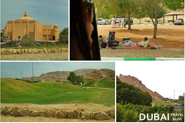 picnic green mubazzarah
