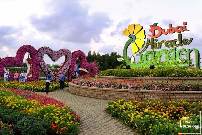dubai miracle garden entrance