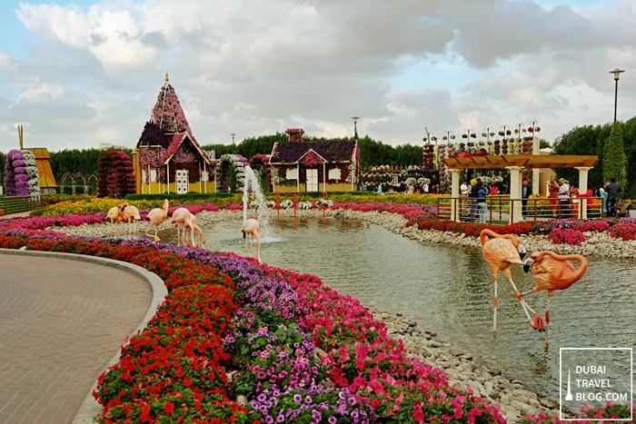 flamingo and ponds flower garden
