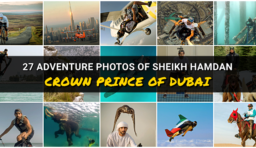 27 Incredible Photos of Sheikh Hamdan, Crown Prince of Dubai