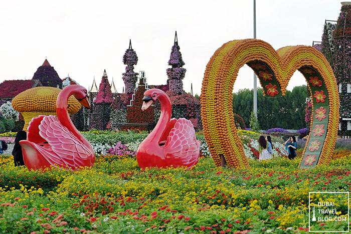 Nice Swans Dubai Miracle Garden