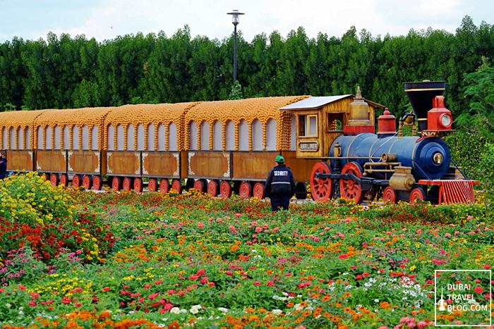 train in dubai miracle garden