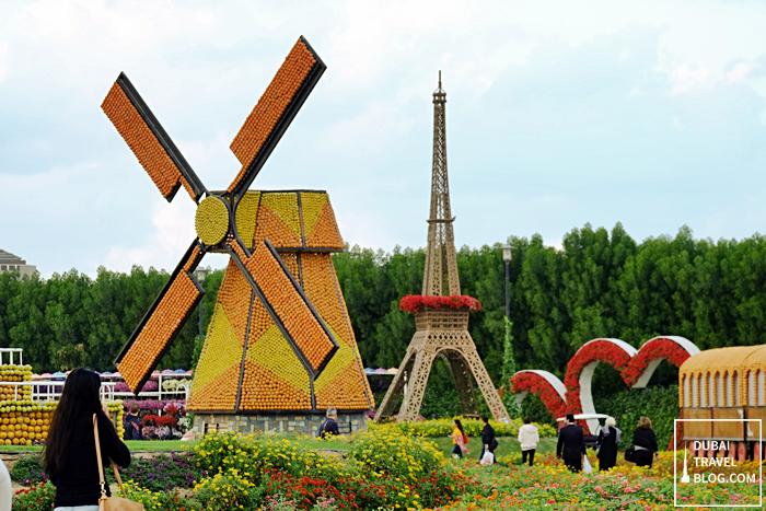 windmill flower garden dubai