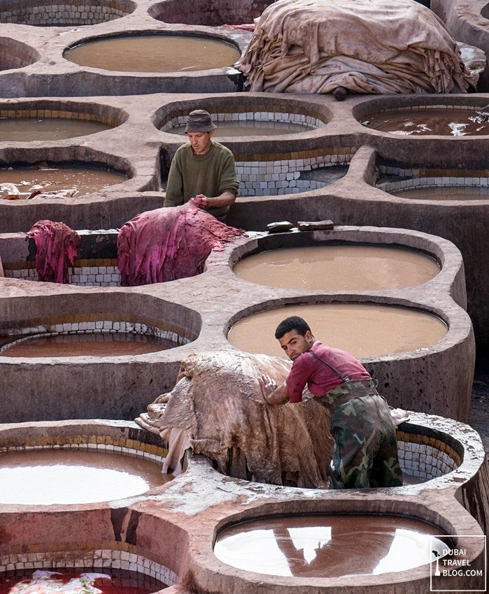 tannery workers fez morocco