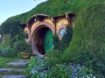Hobbiton Tour in Auckland, New Zealand