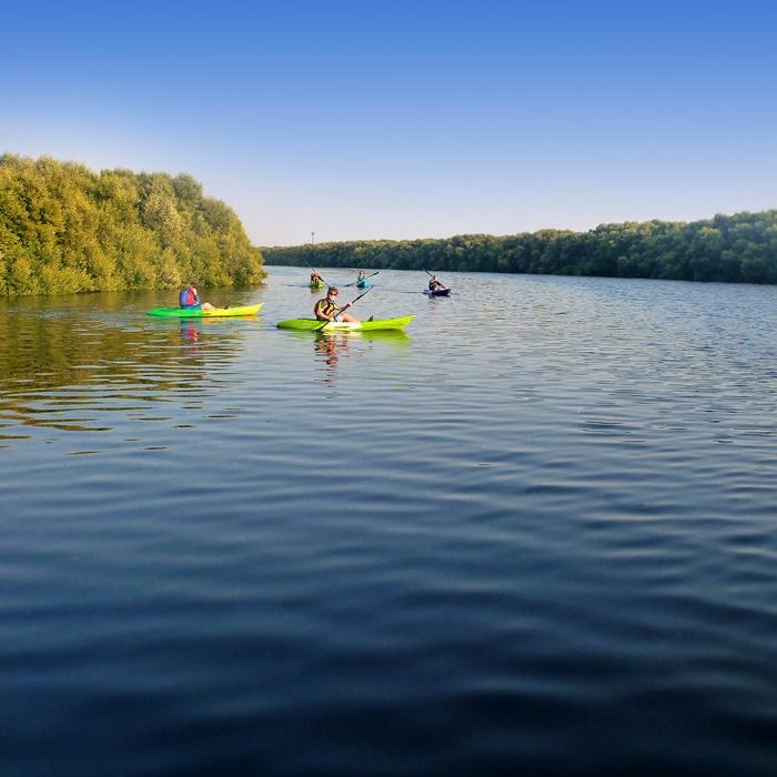Kayaking at Al Zorah