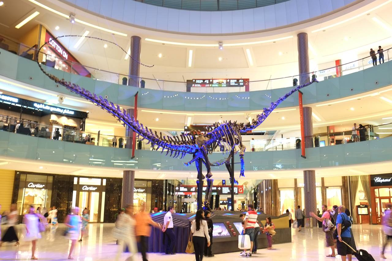 Dubai dino 155 million year old dinosaur in dubai mall for Videos dubai