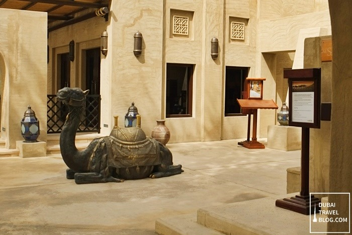 camel in bab al shams dubai