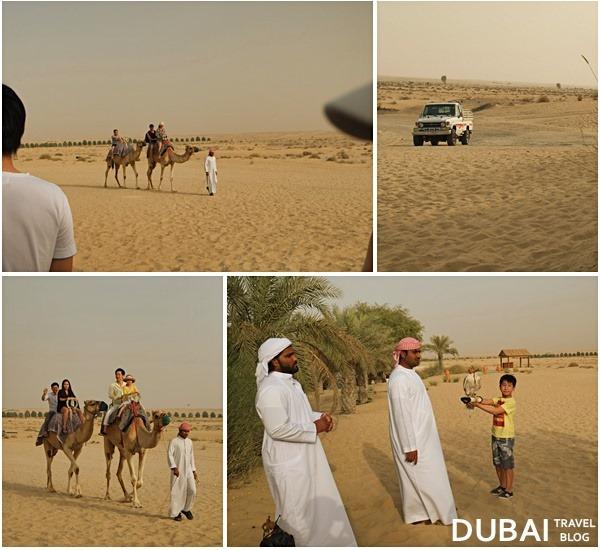 dubai bab al shams desert