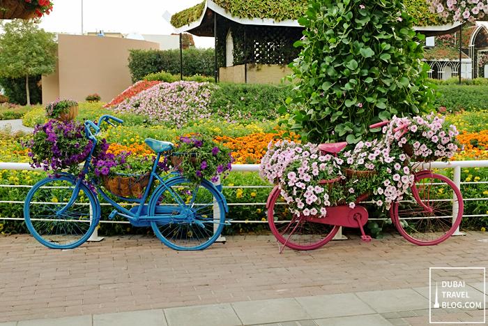 dubai miracle garden bikes