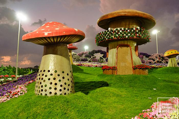 mushrooms in dubai miracle garden