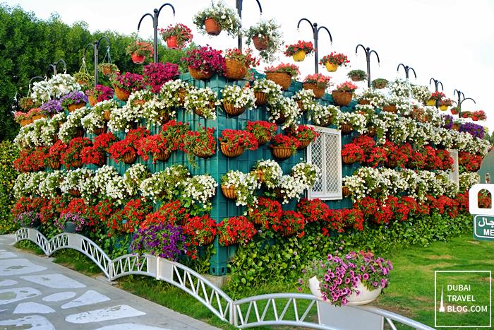 office dubai miracle garden