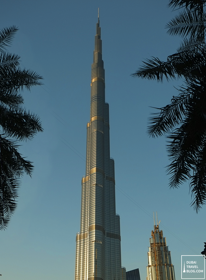burj khalifa view from burj plaza