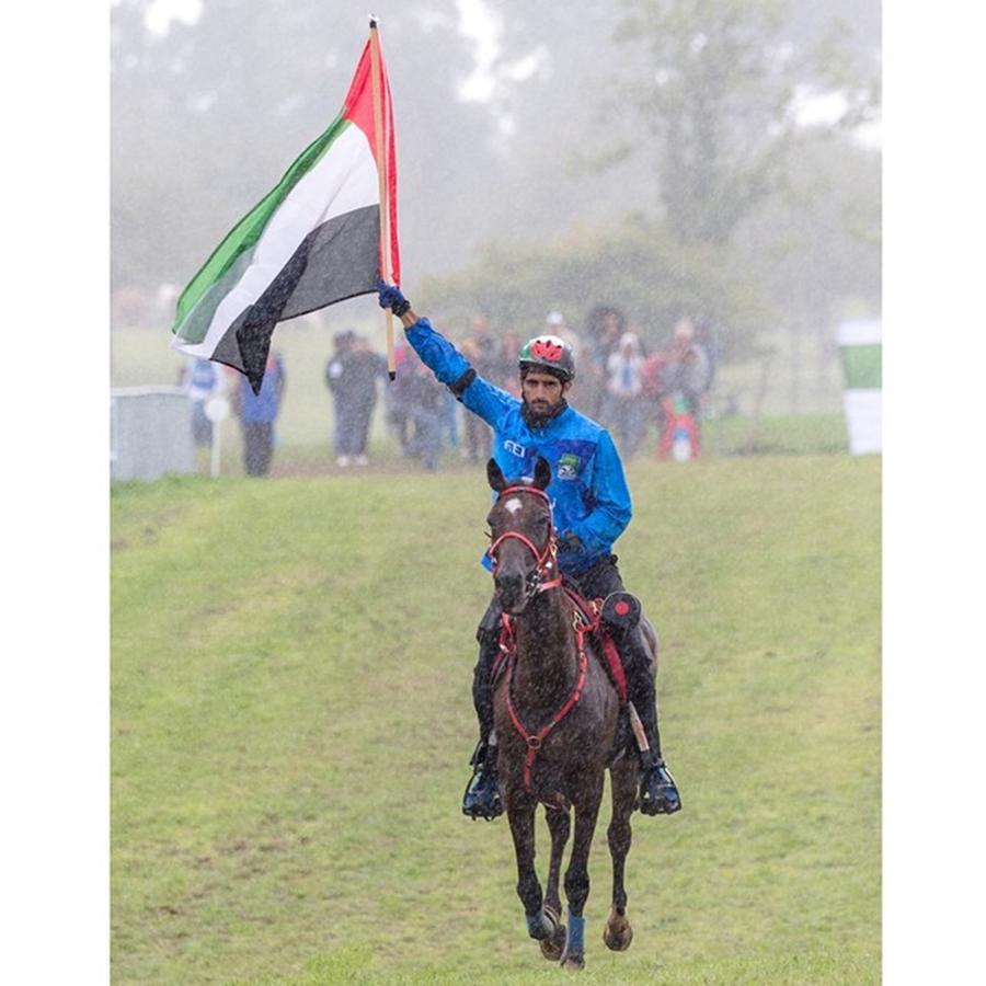 Sheikh Hamdan Horse Flag