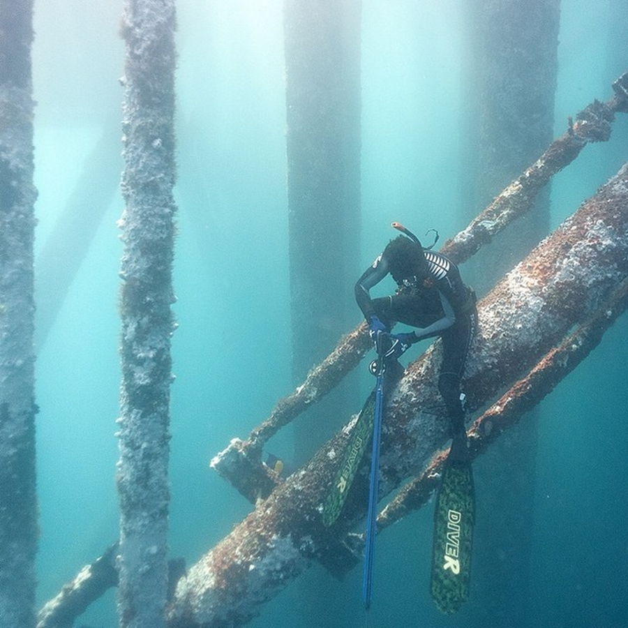 Sheikh Hamdan Spearfishing