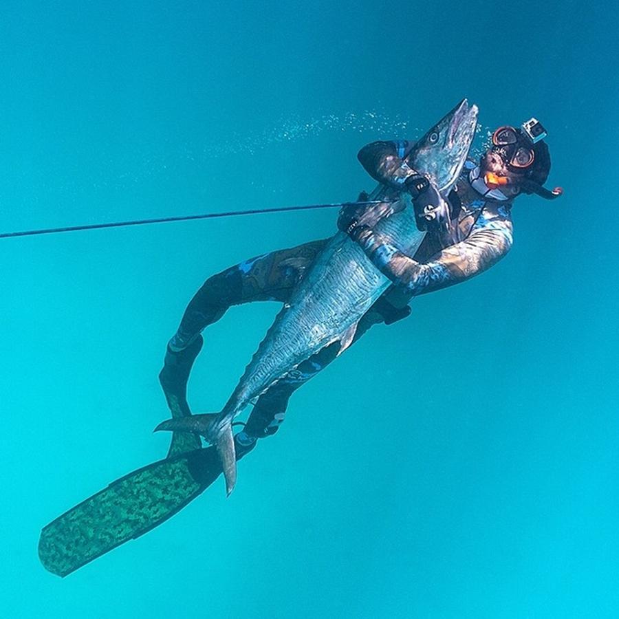 Sheikh Hamdan Underwater Fish