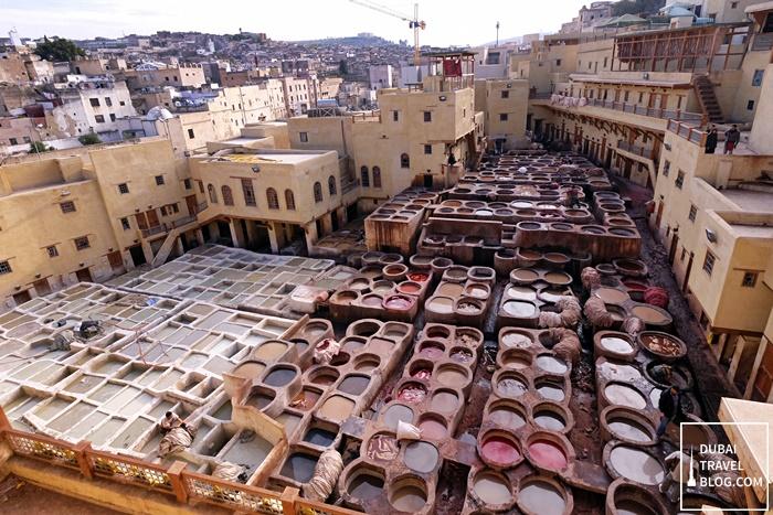 leather tannery fez morocco medina