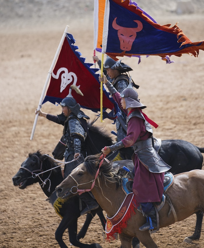 grand horse show ningxia china