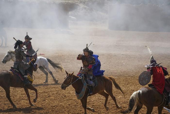 grand show horses ningxia china
