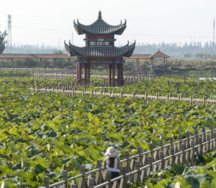 jin sha island zhongwei ningxia