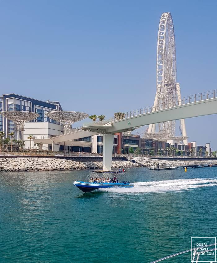 Ain Dubai & Bluewaters Island