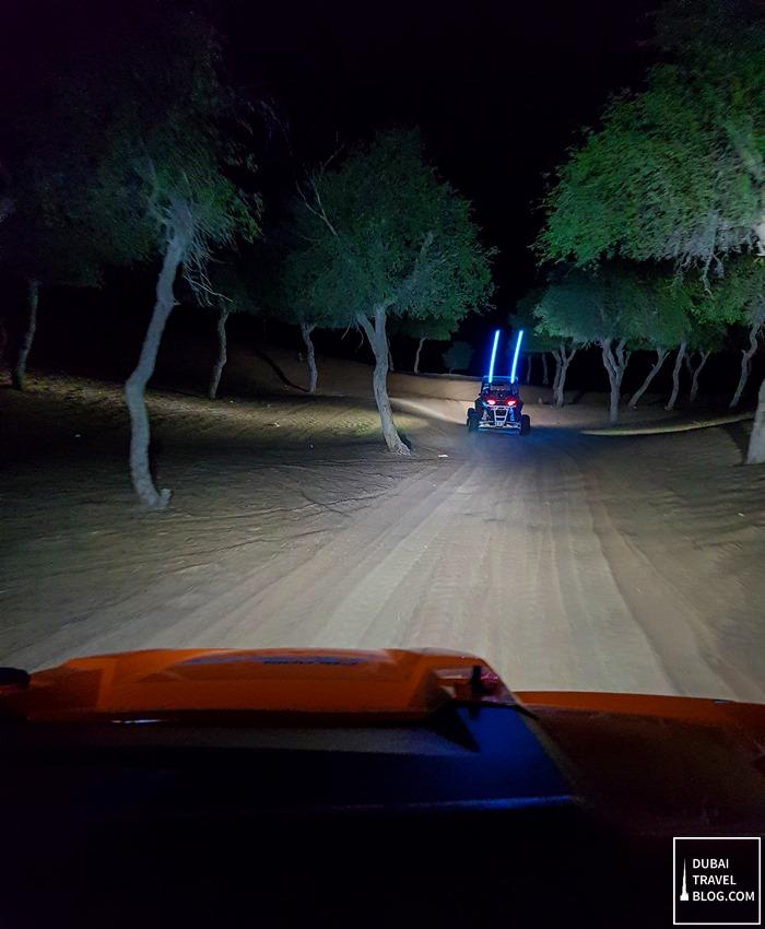 drive dune buggy desert dubai
