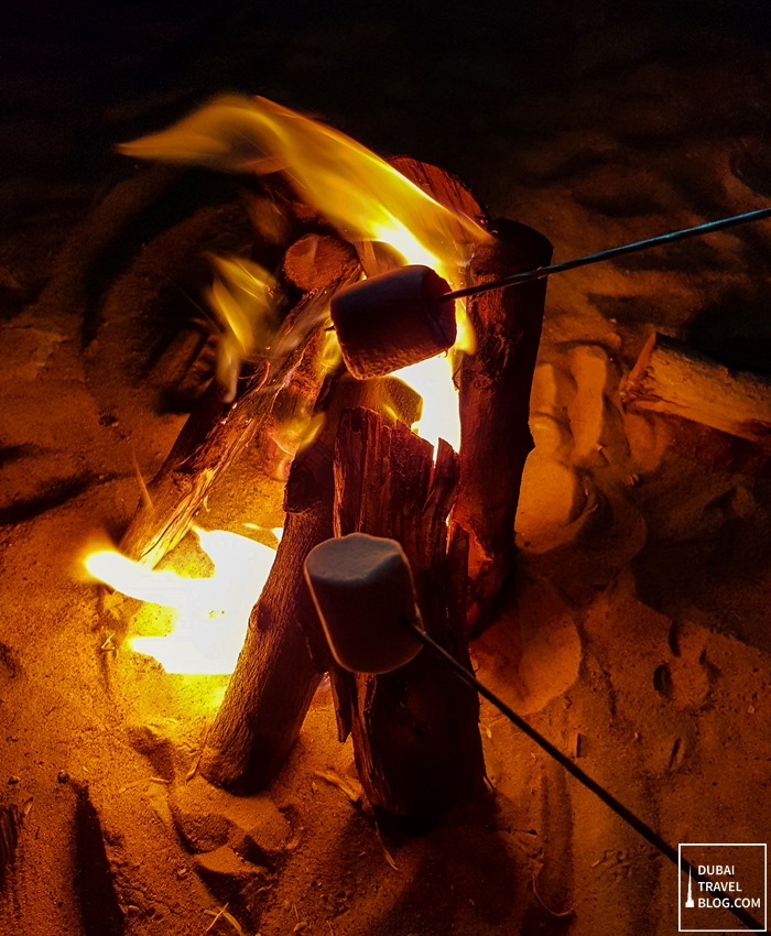marshmallow camping dubai desert
