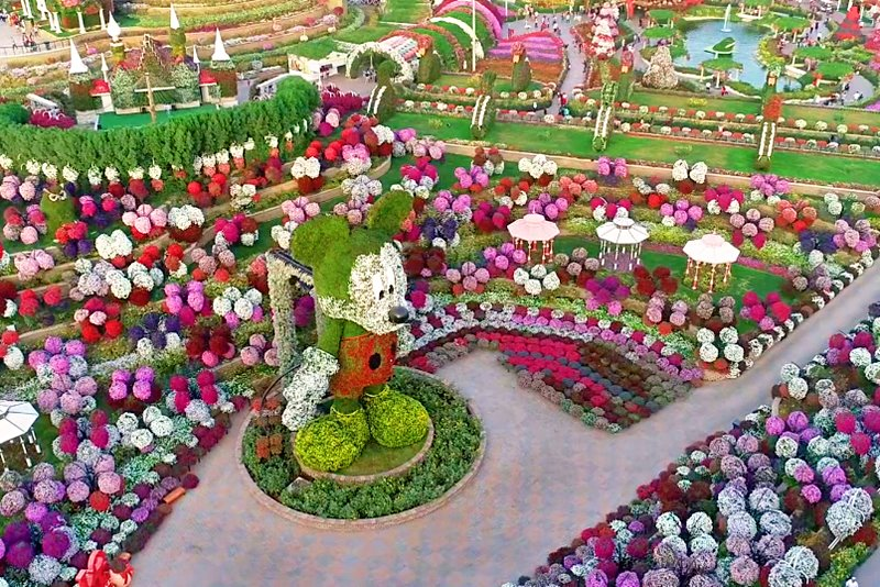 disney avenue flower garden