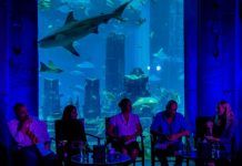 Shark Week Lost Chambers Dubai